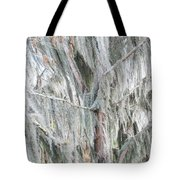 Natures Drapery At Okefenokee Swamp Tote Bag