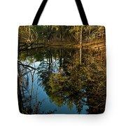 Natures Elements  Tote Bag