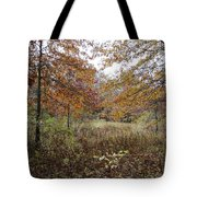 Nature's Expression-10 Tote Bag