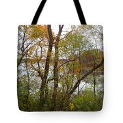 Nature's Expression-11 Tote Bag