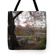 Nature's Expression-13 Tote Bag
