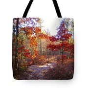 Nature's Expression-17 Tote Bag