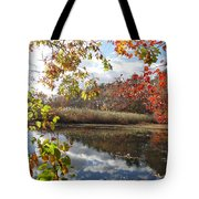 Nature's Expression-18 Tote Bag
