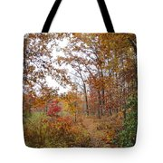 Nature's Expression-2 Tote Bag
