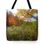 Nature's Expression-3 Tote Bag
