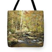 Nature's Finest 5 - Ricketts Glen Tote Bag