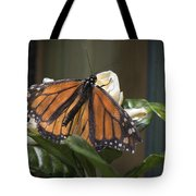 Nature's Glory Tote Bag