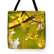 Natures Glow Tote Bag