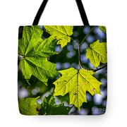 Natures Going Green Design Tote Bag
