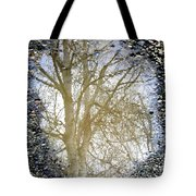 Natures Looking Glass 4 Tote Bag