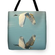 Nature's Mirror Tote Bag
