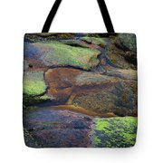 Nature's Mosaic No. 1 Tote Bag