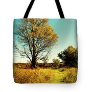 Nature's Pathway Tote Bag