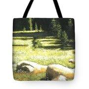 Nature's Pathway Tote Bag