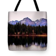 Natures Peace  Tote Bag