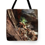Natures Renewal  Tote Bag