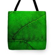 Natures Road Map Tote Bag
