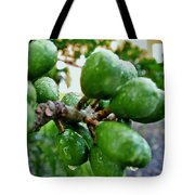 Nature's Shower Tote Bag