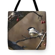Natures Small Wonders Tote Bag