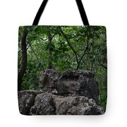 Nature's Throne Tote Bag