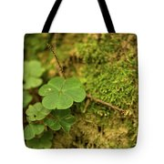 Natures Tiny Work Tote Bag