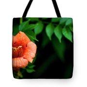 Natures Trumpet Tote Bag