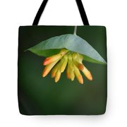 Nature's Umbrella Tote Bag
