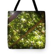 Nature's Upward View Tote Bag