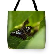 Natures Window Tote Bag