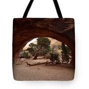 Navajo Arch Tote Bag