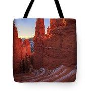 Navajo Loop Tote Bag