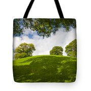 Navan Fort Tote Bag