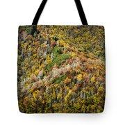 Nc Fall Foliage 0543 Tote Bag