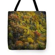 Nc Fall Foliage 0559 Tote Bag