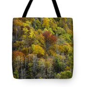 Nc Fall Foliage 0561 Tote Bag
