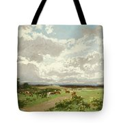 Near Liverpool. New South Wales Tote Bag