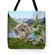 Near The Lake 3 Tote Bag