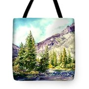 Near The Source Tote Bag