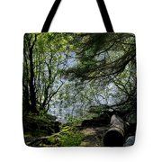 Near Water Of The Forest Lake. Tote Bag