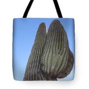 Wickenburg Saguaro  Tote Bag