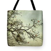 Nearly Bare Branches Tote Bag