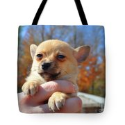 Need Somebody To Love Tote Bag