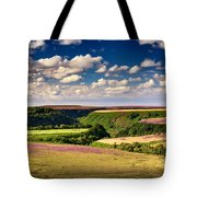Needle Point From Saltersgate Tote Bag
