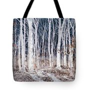 Negative Spaces Tote Bag