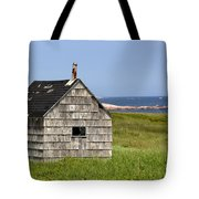 Neils Harbour Tote Bag