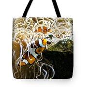 Nemo And Marlin Tote Bag