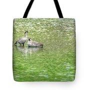 Nene On Green Pond Tote Bag