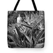 Nepenthe Bird Of Paradise B And W Tote Bag