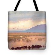 Nephin Dawn Tote Bag