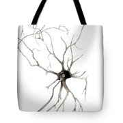 Nerve Cell From Spinal Cord, Deiters Tote Bag